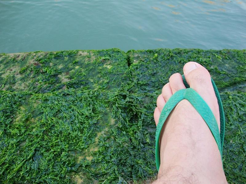 foot+slime